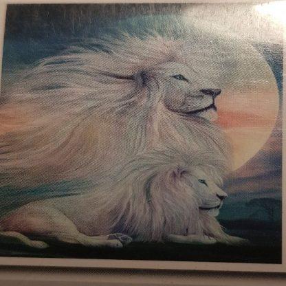 Hvide løver, Diamond Painting